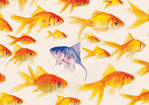 goldfish - Copyright – Stock Photo / Register Mark