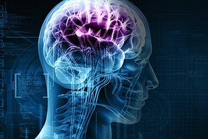 injured brain - Copyright – Stock Photo / Register Mark