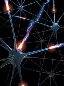 neurons and nerves - Copyright – Stock Photo / Register Mark