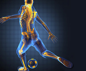 sports science - Copyright – Stock Photo / Register Mark